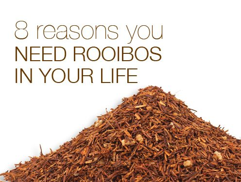 8 Reasons You Need Rooibos In Your Life