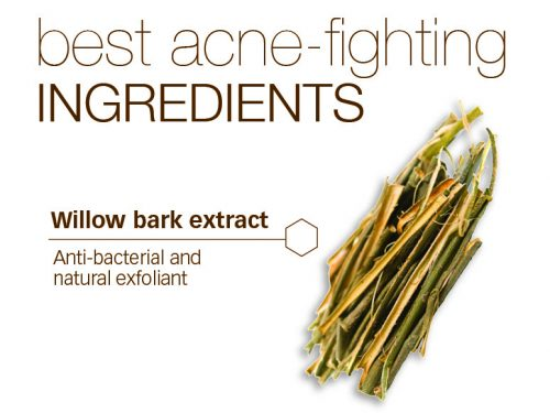The Best Acne-Fighting Ingredients